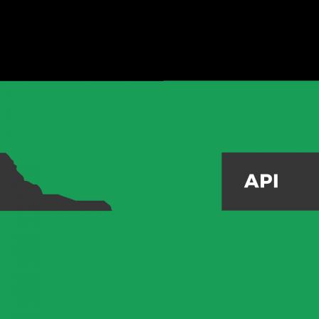 USA API