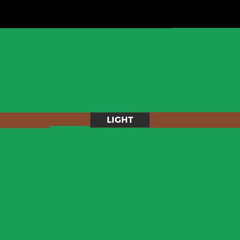 Americas Database Light