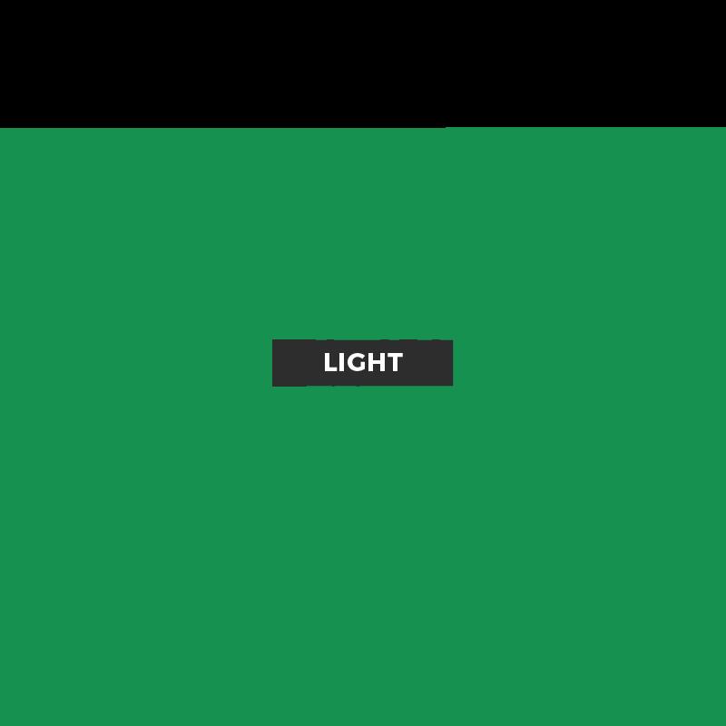 Europe Database Light