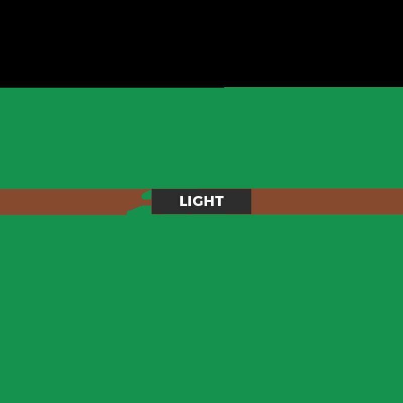 UK Database Light