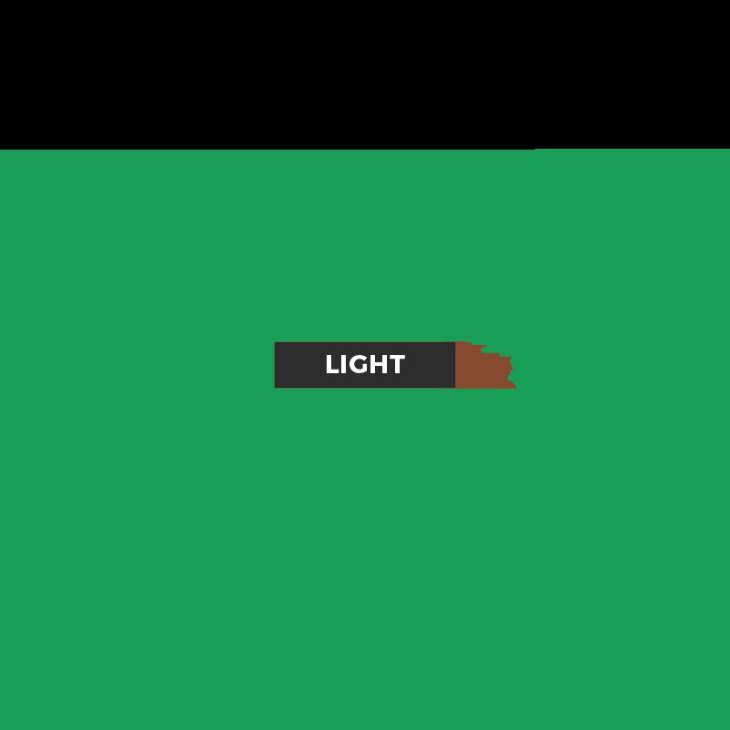 USA CANADA Database Light